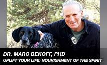 Marc  Bekoff